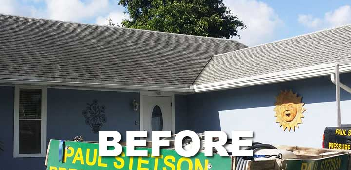 Asphalt Shingle Roof Cleaning